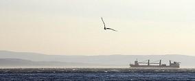Opazovanje ladij in naftnih izlitij.